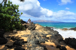 Maui is the most popular island of Hawaii!