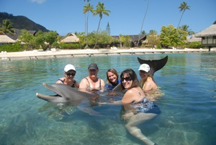 Visit the dolphins, swim with them and learn all about Dolphins!