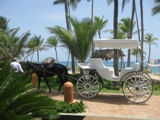 Weddings in Punta Cana are exciting!